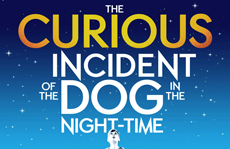 The Curious Incident of the Dog in the Night-Time theatre breaks